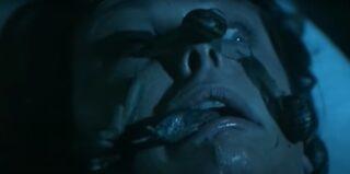 """La scena delle lumache in """"Aenigma"""" è un'autocitazione"""