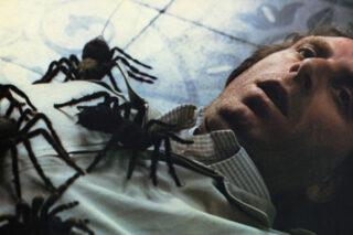 Mirabella assalito dai ragni, prima di essere divorato